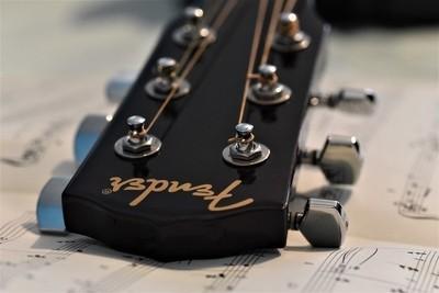 Fender Macro