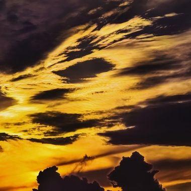 Sunset Like a Lion NW