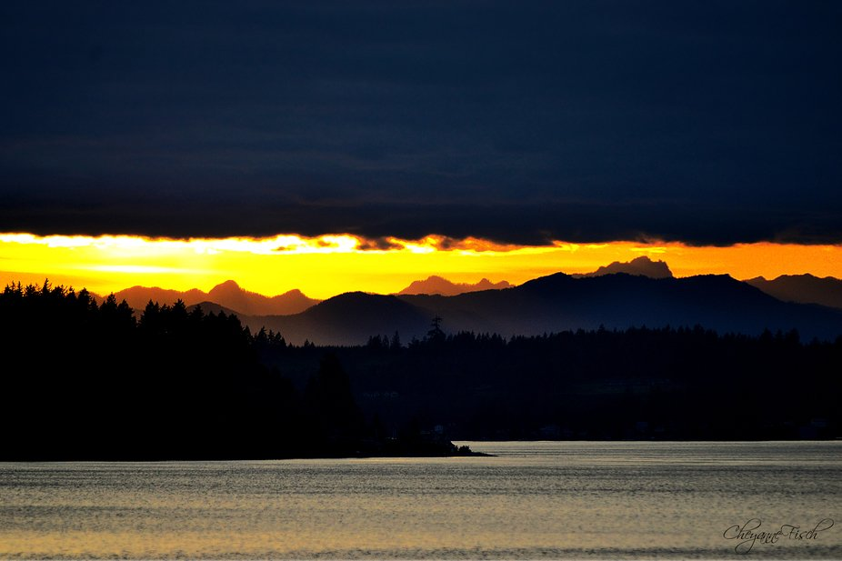 Good Night Puget Sound