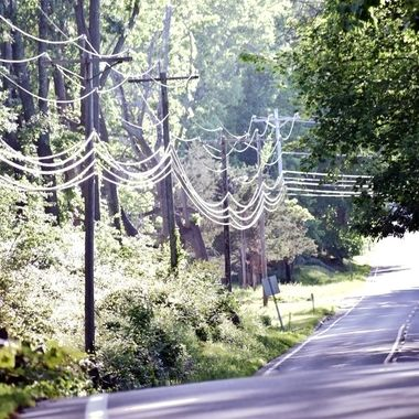 like a spider web on the road