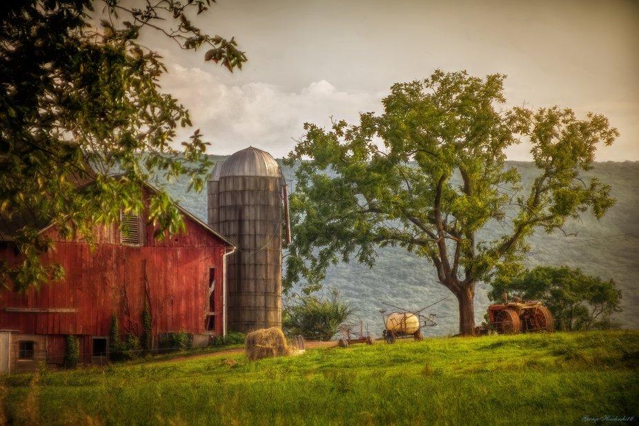 Mill Road Farm