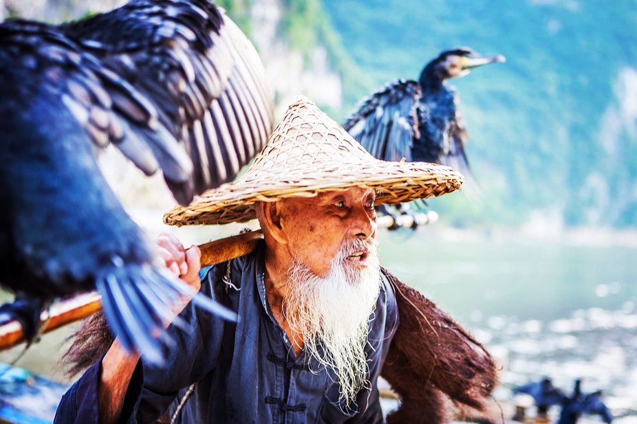 92 years old feisherman from Yangshou in China