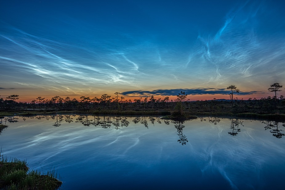 Electric blue noctilucent clouds reflection from a bog pond in Estonia