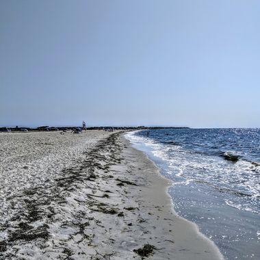 Shorely