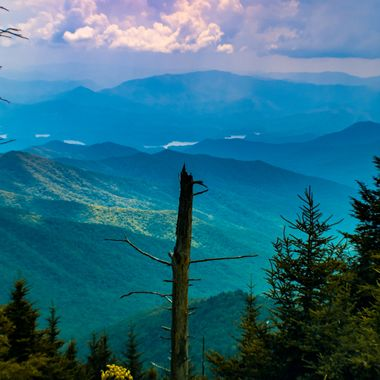 View from Clingsman Dome, Smokey Mountains