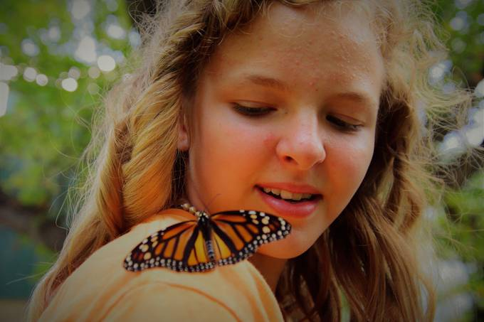 Taken at the Butterfly Release for Hospice Nikon D7200 Tamron 18-400 lens