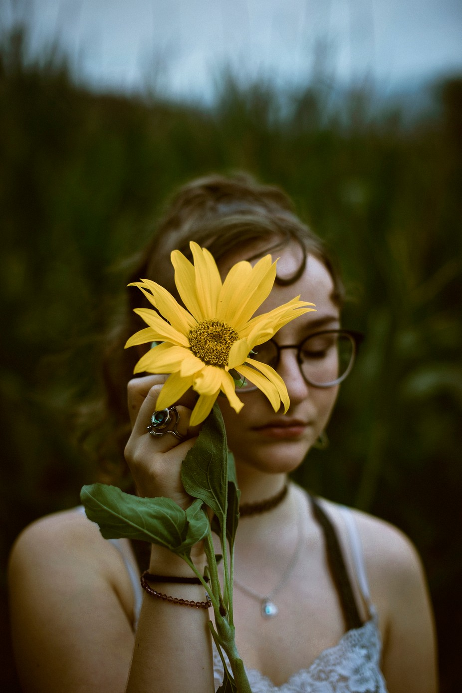 Sunflower magic  by NoelleBuske