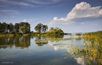 a quiet backwater...