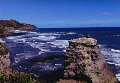 Muriwa Beach and Gannet Colony