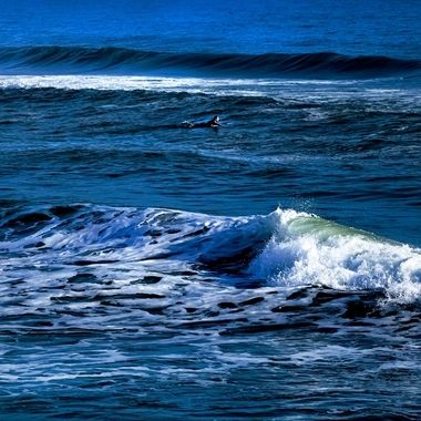 Lone Surfer NW