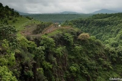 The dense green forest of Satpura Range