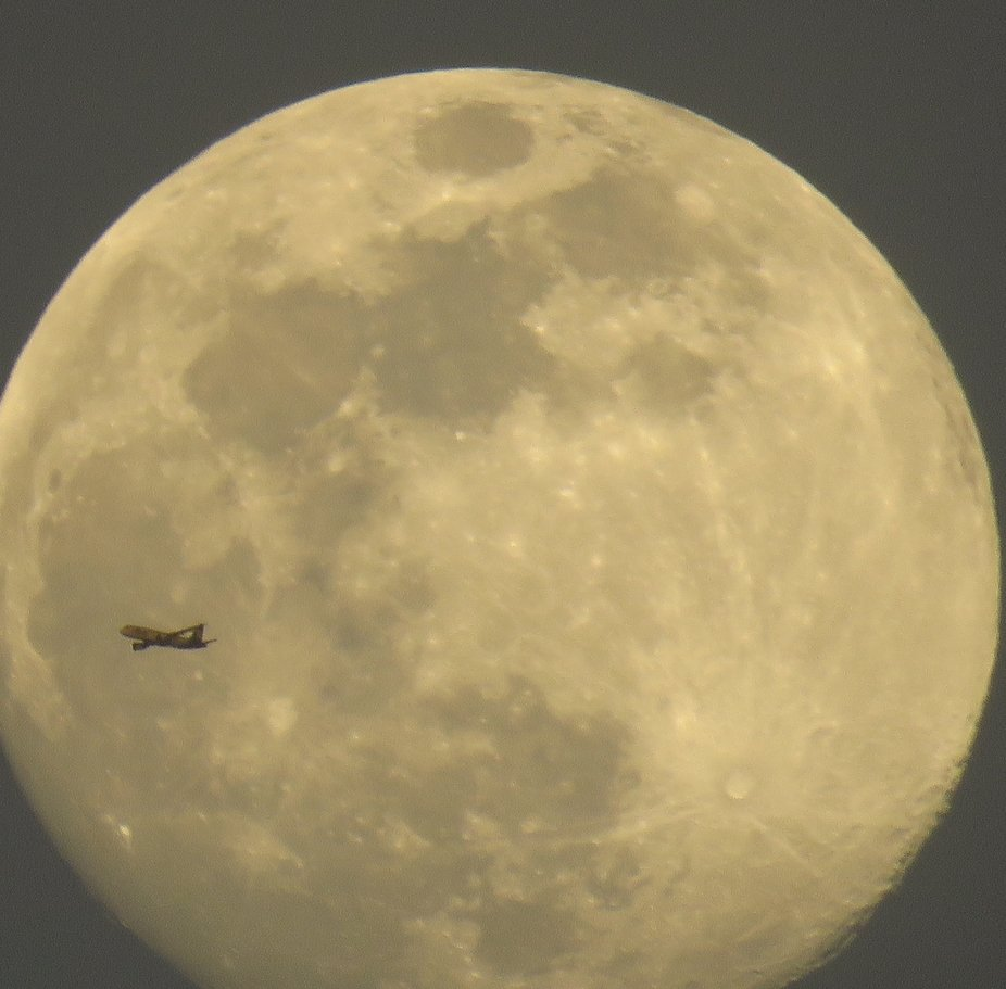I was taking photos and this airplane came across the moon and this stunning photo was the result!