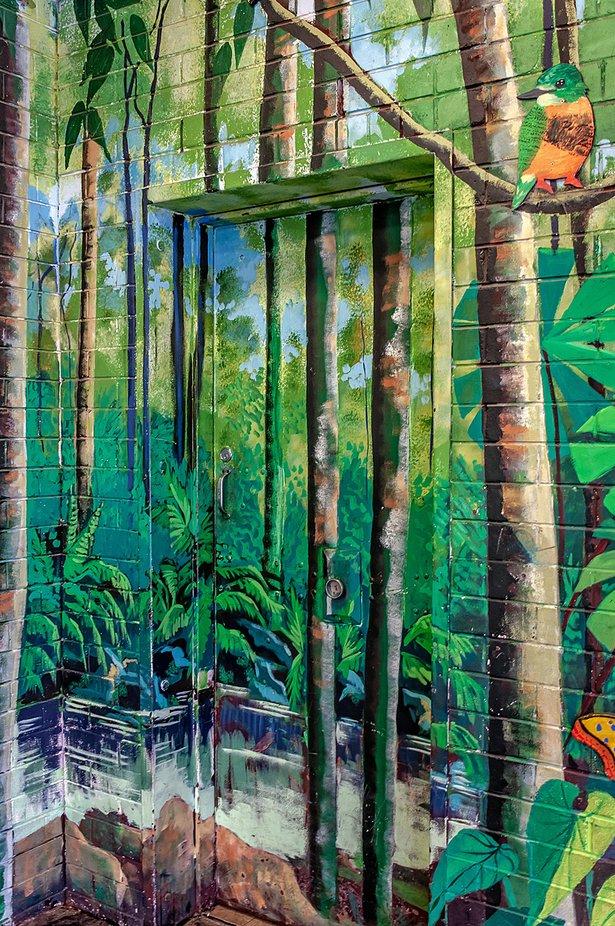 Mural - Rainforest