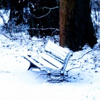 winter 2019 8
