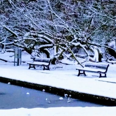 winter 2019 9