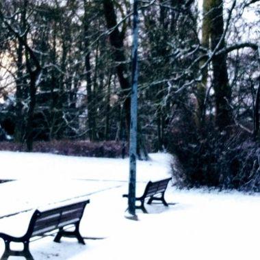 winter 2019 12