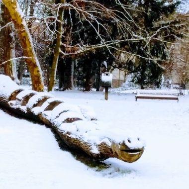 winter 2019 18