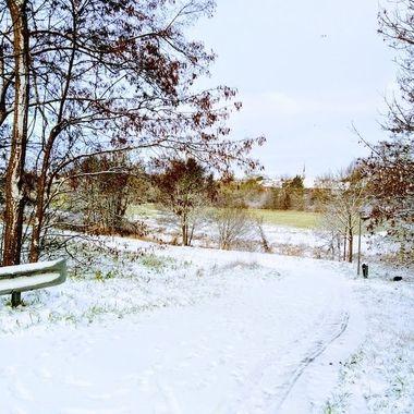 winter 2019 20