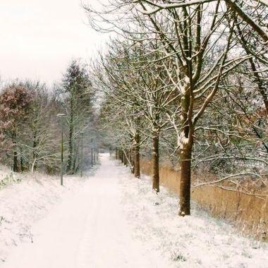 winter 2019 24