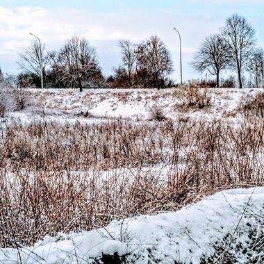 winter 2019 30