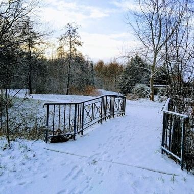 winter 2019 40