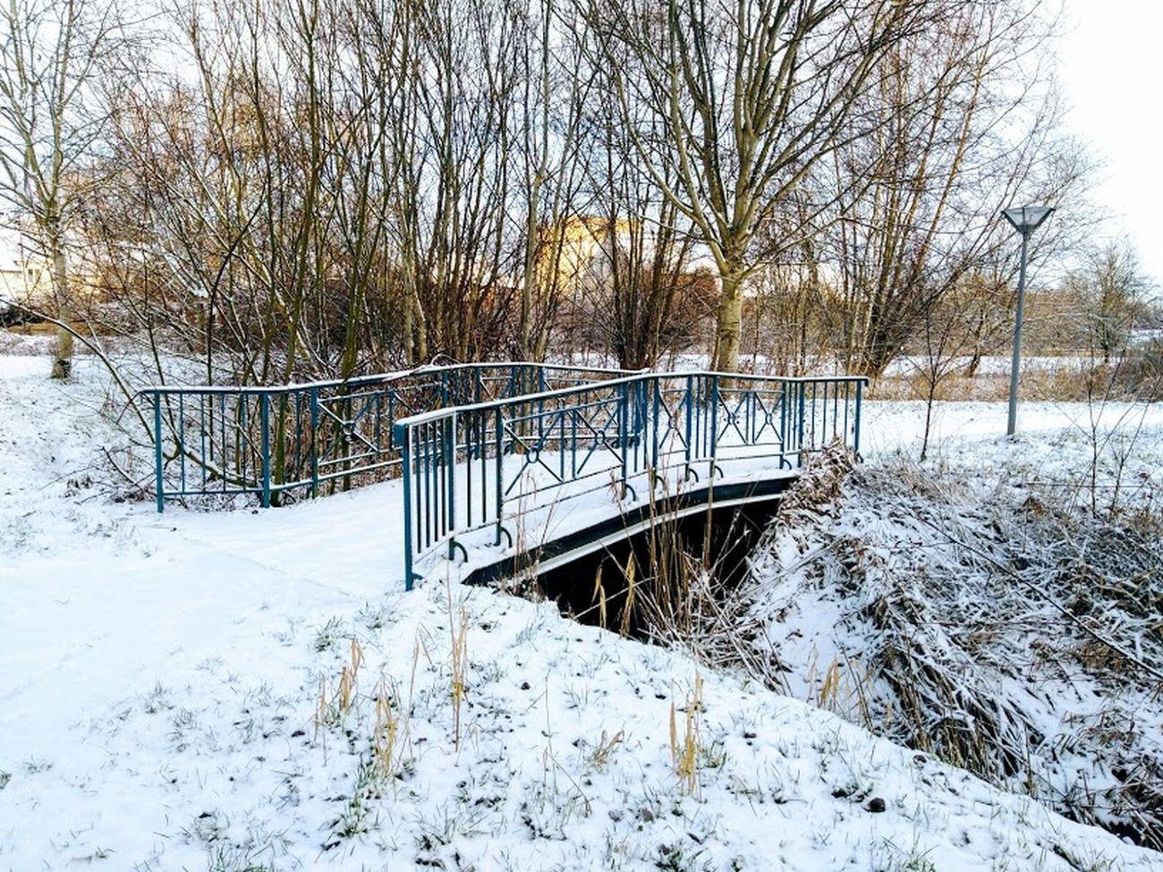 winter 2019 43