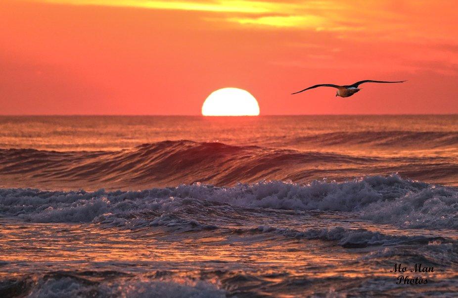 Walking on the dawn beach I see much magic.