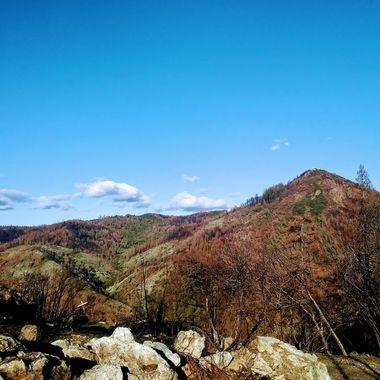 Burnt view