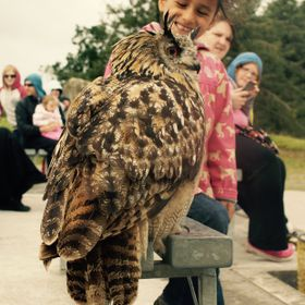 Happiness when an eagle-owl lands beside her.