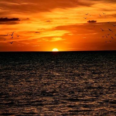 Gulf Coast Sunset NW