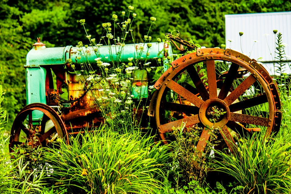 Old field tractor, I loved the colors and vintage style, with the wild flowers growing