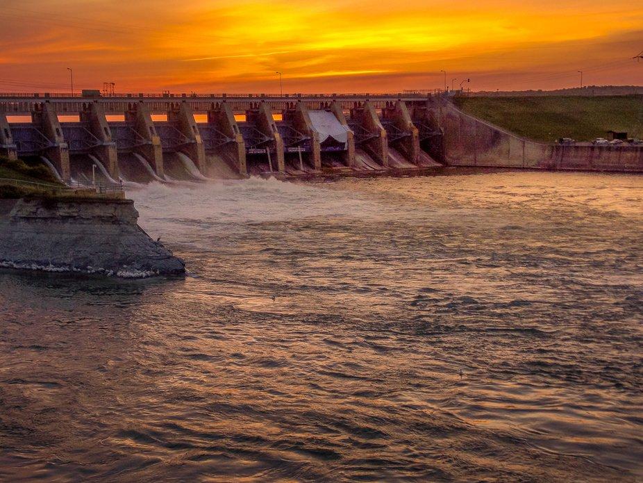 Prairie Dam