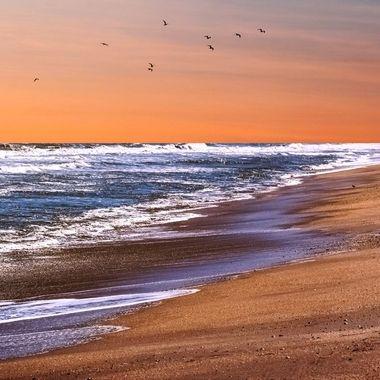 Golden Sunset NW