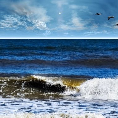 Waves of Peace NW