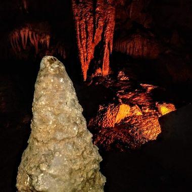 Cave fang