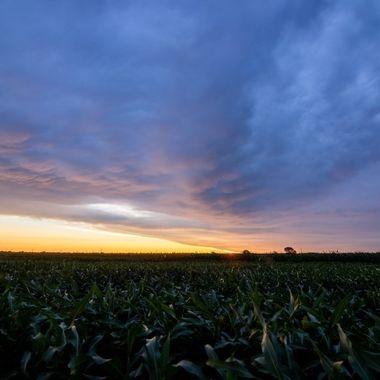 Shot outside of Lincoln, Nebraska