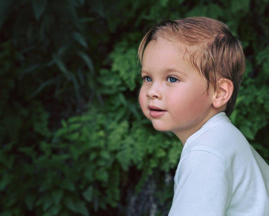 Little explorer boy