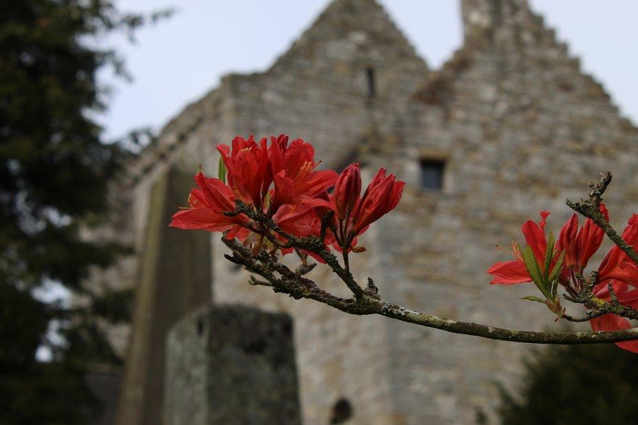 Torphichen Preceptory. Headquarters of the Knights of St John templar.