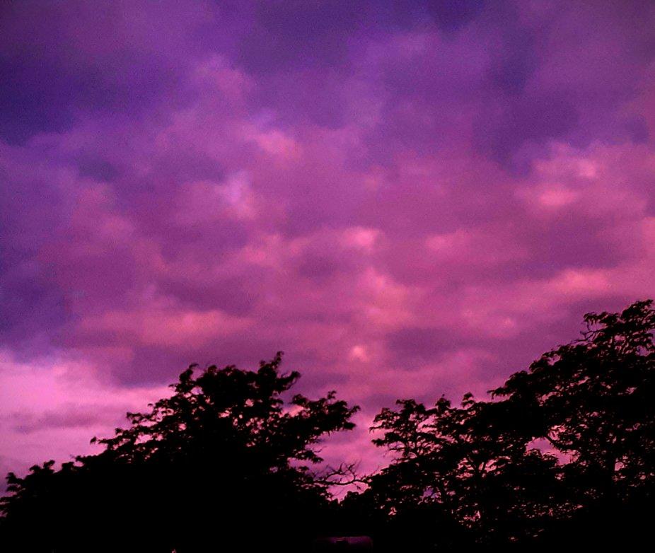 What I saw towards nightfall  on a warm August night.