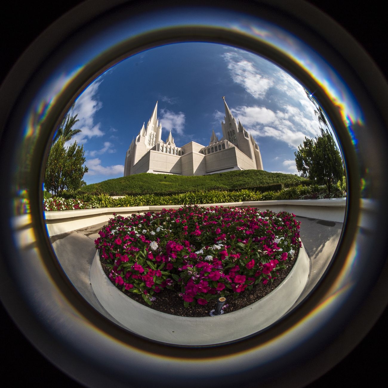Fisheye view of San Diego Temple with flowers in foreground. Temple belongs to The Church of Jesus Christ of Latter Day Saints.