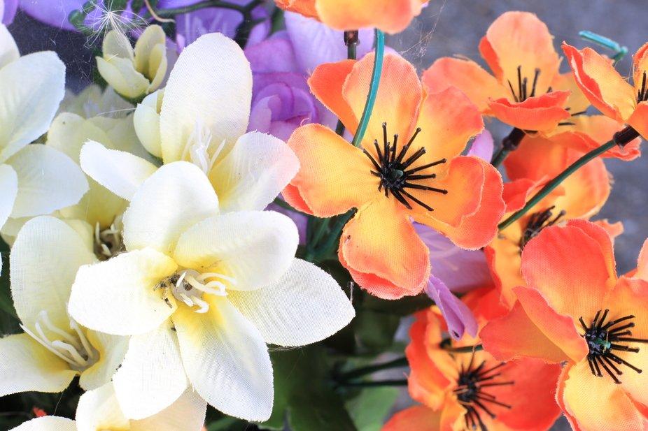 In memory flowers