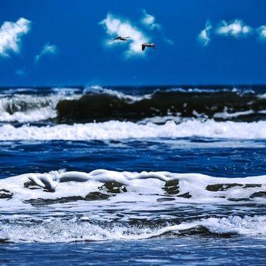 Ocean View NW