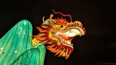 Lantern Festival-Dragon