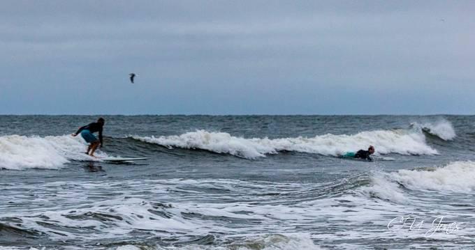 Surfers on Folly