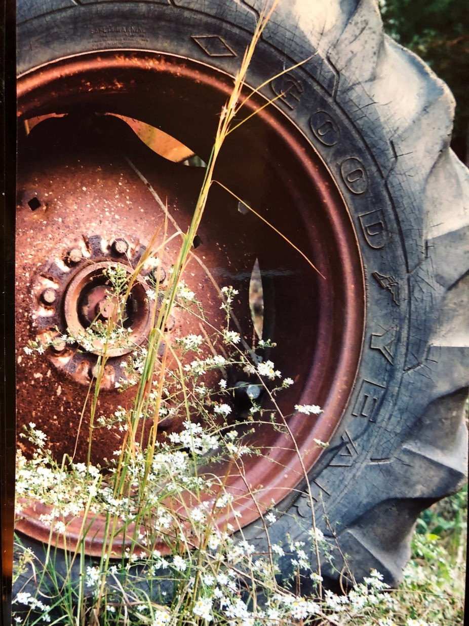 I did a photo shoot at one of the few Grist mills in Alabama which survived the Civil War. This wheel had gone to rest there.