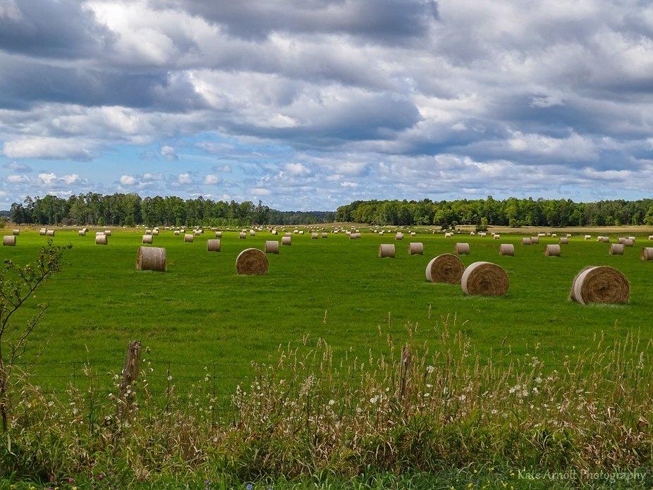 The Farmers Fields