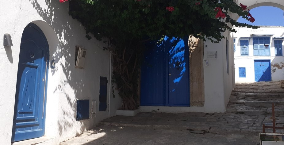 The white and blue village, the white pearl of Tunisia, the Tunisian Montmartre, the balcony of t...