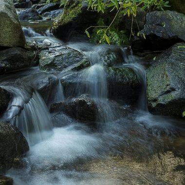 Stag Tree Creek Falles 2