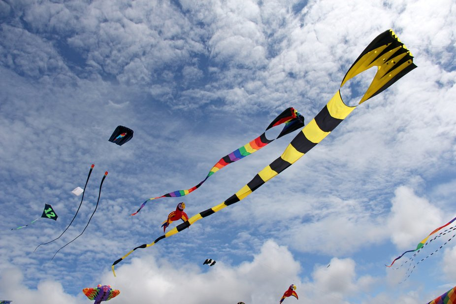 Went to the beach and was surprised to see all the kites.  It was a blue sky day and just windy e...