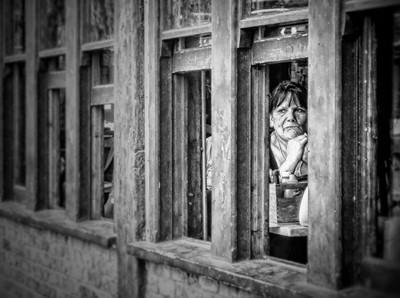 Window Wandering